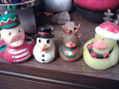 Christmas ducks